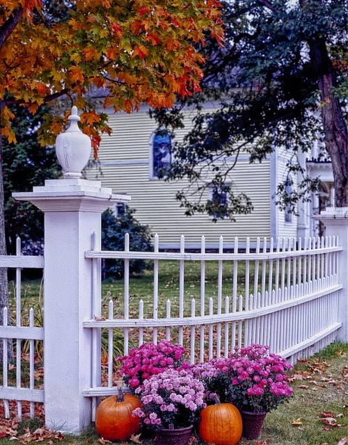 Kent Realtor Marti Reeder: 7 Tips for Selling Your House in the Fall