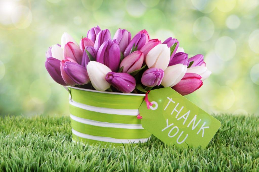 "Kent Realtor Marti Reeder: Thank you for your 'Best of Kent"" votes!"